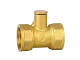 黄铜测温直通阀